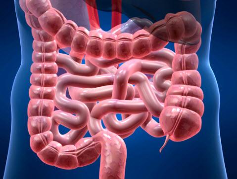 Что происходит при дисбактериозе?
