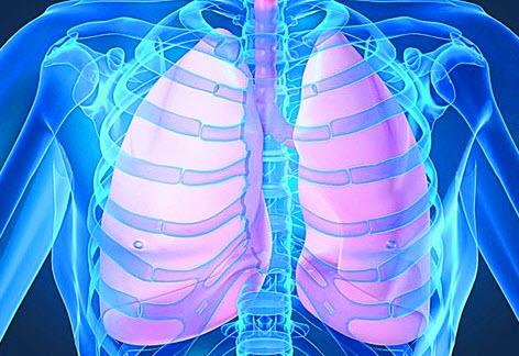 Патогенез туберкулеза